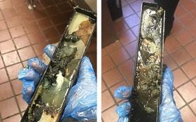 Tháo khay đựng từ máy làm kem McFlurry của McDonald's, không ai tin vào mắt mình khi thấy thứ này