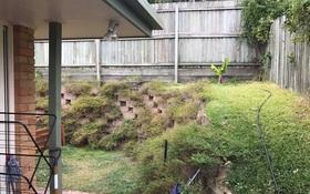 Có con rắn đang lấp ló trong khu vườn nhưng không ai biết chính xác nó ở đâu