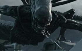 """14 hiện thân ghê rợn của """"Alien"""" đã xuất hiện trong thương hiệu phim suốt 4 thập kỷ"""