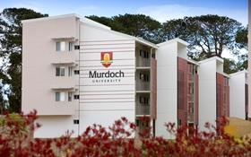 5 nhóm ngành được ưu tiên định cư khi du học Úc