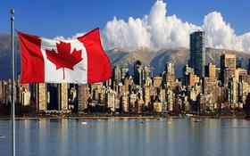 """Hội thảo Canada """"Chọn đúng ngành, làm đúng việc"""" - Visa nhanh thuận lợi"""