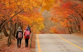 Hàn Quốc – Thiên đường xanh mướt hạ về, đỏ lá thu sang