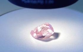 Lộ diện viên kim cương hồng lớn nhất trong lịch sử nước Nga