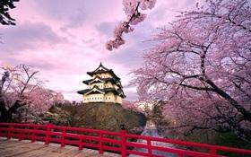 Nhật Bản - Tuyệt sắc giao mùa khiến bạn phải muốn đặt chân đến ngay