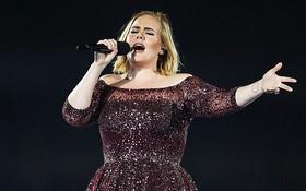 Quá khó chịu, Adele dừng show giữa chừng để mắng nhân viên an ninh