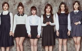 Công ty quản lý của T-ara sắp tung boygroup mới 10 thành viên