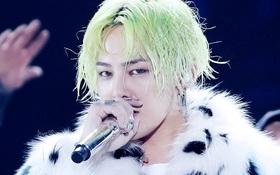 G-Dragon và bộ đôi Indie so kè nhau trên BXH Kpop