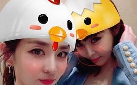 Chiếc mũi của Park Bom ngày càng nhọn và lệch bất thường