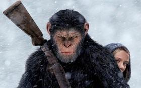 """""""War for the Planet of the Apes"""" khiêu chiến với Người Nhện tại phòng vé"""