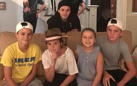 Harper Beckham khoe răng sún đáng yêu bên gia đình tại trường quay phim