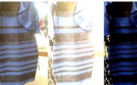 Hé lộ lời giải mới về chiếc váy gây tranh cãi chưa từng có trên toàn thế giới