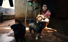 Những mẩu chuyện nhỏ xinh của người Sài Gòn yêu mèo, yêu chó!