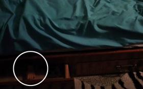 Sự thật về bàn tay trẻ con thò ra từ gầm giường của cô gái trẻ