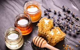 Chỉ cần đầu tư 1 muỗng mật ong mỗi ngày, bạn sẽ nhận được hiệu quả khó tin