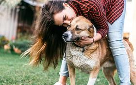 """Chó cũng biết """"nói""""? Phát hiện gây sốc nâng tầm trí khôn của chó lên một đẳng cấp mới"""