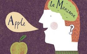 Thêm một lý do khiến bạn cảm thấy cần nhanh chóng đi học thêm ngoại ngữ