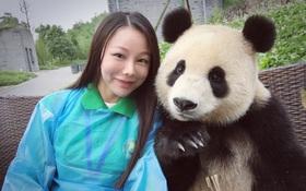 Chú gấu trúc thích chụp selfie nhất thế giới sẽ khiến bạn yêu ngay từ cái nhìn đầu tiên