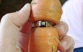 Đánh rơi chiếc nhẫn đính hôn bằng kim cương, 13 năm sau điều kì diệu đã đến với cụ bà ngoài 80