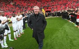 Man Utd xác nhận Sir Alex trở lại ghế chỉ đạo