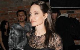 Người mặt tròn kẻ V-line, riêng Angelina Jolie mặt vuông vẫn sang chảnh ngời ngời