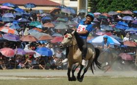 Bất chấp cái nóng 40 độ C, hàng nghìn người dân đội nắng xem đua ngựa ở Bắc Hà