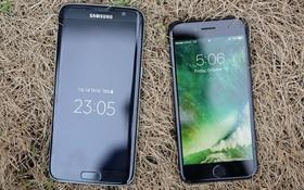 """Chia buồn với """"Samfan"""", chưa gì iPhone 8 đã có vẻ thú vị hơn Galaxy S8"""