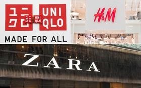 H&M, Zara và Uniqlo: Đều là thời trang bình dân, tưởng giống nhau mà thực ra lại rất khác!