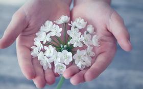 Tìm hiểu cách đan tay vào nhau để khám phá tính cách mỗi người