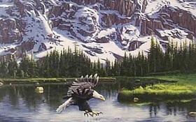 Chỉ Thánh Soi mới biết có bao nhiêu con vật đang rình rập ăn thịt đại bàng