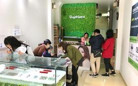 Bật mí địa chỉ mua kính áp tròng Hàn Quốc giá siêu rẻ