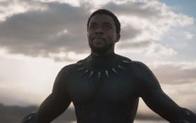 """Trailer đầu tiên của """"Black Panther"""" đẹp """"hú hồn chim én"""""""