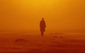 """""""Blade Runner 2049"""" ra mắt mờ nhạt tại phòng vé Bắc Mỹ"""