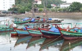 Cấm tàu thuyền tại các tỉnh Nghệ An và Hà Tĩnh ra khơi do bão số 2
