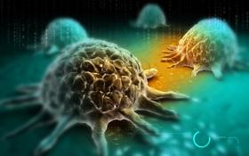 Tin sốc: Bạn có thể đang mang nguy cơ mắc tới 5 loại ung thư!
