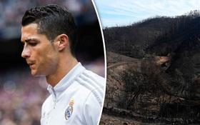 Ronaldo trả viện phí cho 370 nạn nhân thảm họa cháy rừng ở Bồ Đào Nha