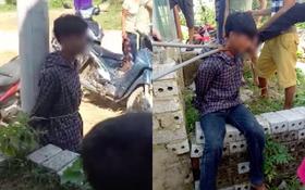 Xôn xao clip nam thanh niên trộm gà bị người dân dùng kìm kẹp cổ, trói vào cột điện