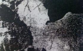 Bạn nhìn thấy gì trong bức tranh đen trắng mờ ảo, điều đó sẽ nói lên tính cách của bạn