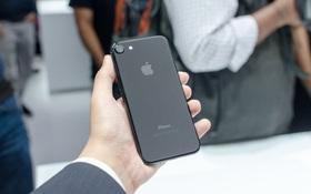 Quên iPhone 8 đi, iPhone 7 mới là smartphone đáng mua nhất trong năm nay