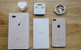 Chỉ nhìn chi tiết nhỏ này trong hộp iPhone là bạn sẽ thấy Apple yêu môi trường như thế nào