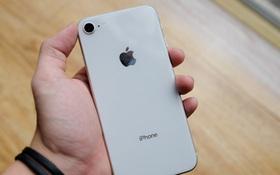 6 lý do bạn nên mua luôn iPhone 8/8 Plus thay vì đợi iPhone X