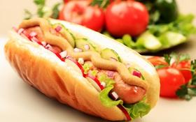 """Ăn """"hot dog"""" nhiều là thế nhưng tên gọi này từ đâu chui ra vậy?"""
