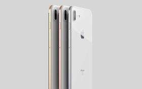 iPhone 8 sẽ có thiết kế không tưởng: camera kép xếp dọc phía sau, nút Home bị loại bỏ?