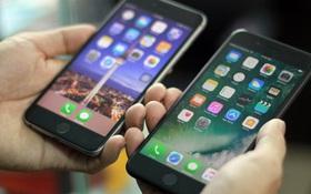 Sự thật ít người biết đằng sau những chiếc iPhone cũ bán tại Việt Nam