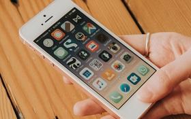 Sẽ có iPhone mới được Apple tung ra cuối tháng này, iFan nên gom lúa thôi nào