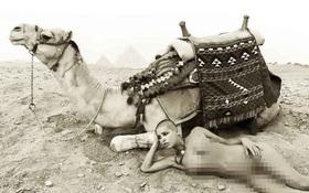 Chụp ảnh khỏa thân phản cảm bên Kim tự tháp Ai Cập, cô người mẫu trẻ bị tống vào tù