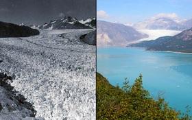 Chúng ta chỉ còn 1.000 ngày để cứu Trái đất, trước khi bước vào giai đoạn không thể phục hồi
