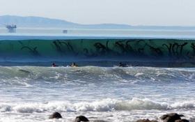 Nghe tưởng đùa nhưng nếu có những cảm giác này, bạn đã mắc hội chứng sợ biển