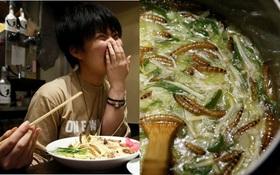 Nếu bạn nghĩ mình chẳng sợ ăn gì, hãy thử món mì Ramen côn trùng Nhật Bản này đi
