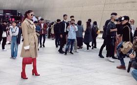 Cuối cùng, Hoa hậu Phạm Hương cũng đã chịu xuất hiện ở Seoul Fashion Week