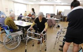 Nghiệt ngã tuổi già Nhật Bản